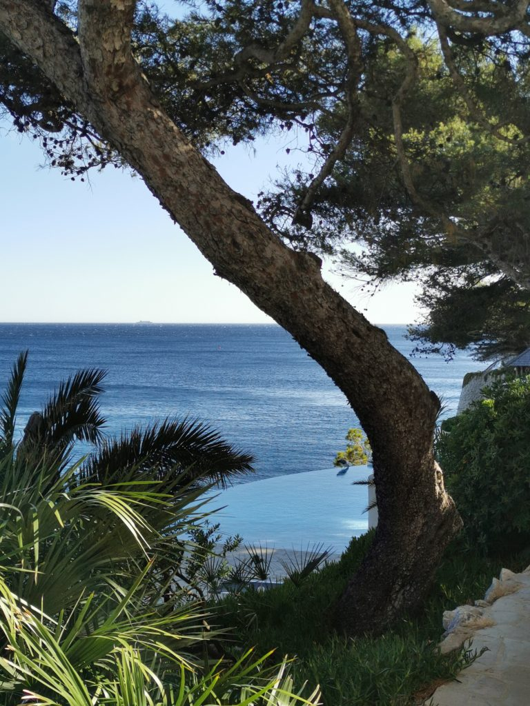LES ROCHES BLANCHES CASSIS